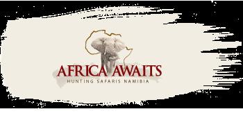 Africa Awaits Hunting Safaris Namibia