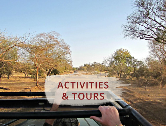 Activities and Tours