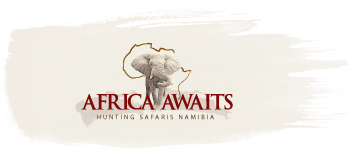 Africa Awaits Hunting Safaris Namibia